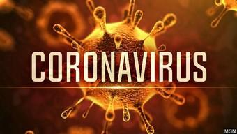 gamota, virus corona, corona, game gamota
