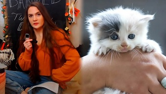 Vạch trần trại sản xuất mèo con vô nhân tính, nữ streamer bị khóa kênh một cách tức tưởi